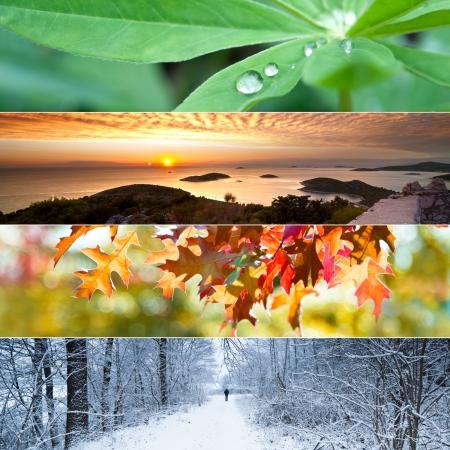 Four seasons concept with leaves, sunset view, autumn leaves and winter landscape Foto de archivo