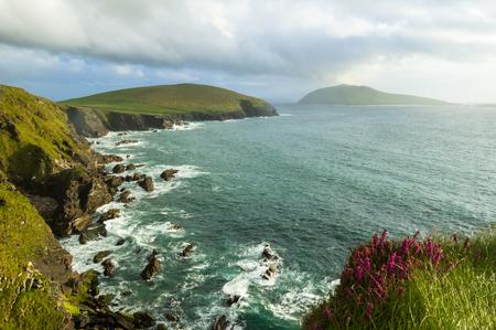 dingle: Cliffs on the coastline at Slea Head, Dingle, Ireland