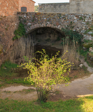 The small garden under the old bridge.