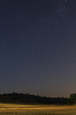The pleasure of being able to see the stars from the field