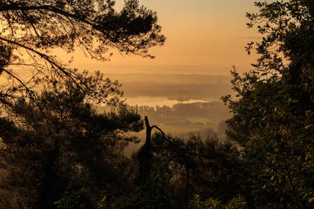 Lake seen at sunrise with trees around at sunrise. Concept elements of Nature Foto de archivo