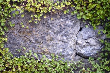 stone wall frame photo