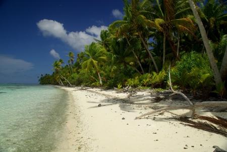 moorea: White sand Beach on polynesian island of Tetiaora owned by Marlon Brando