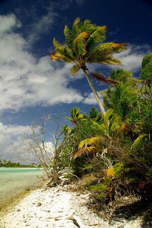 Turquoise Lagoon in French Polynesia Stock Photo - 5778260