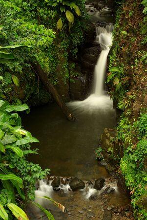 martinique: Cascada en la selva tropical del Caribe  Foto de archivo