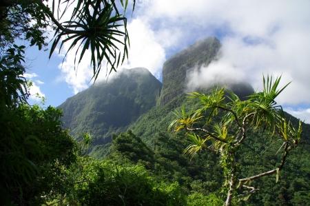 moorea: Mountain and jungle in Tahiti Stock Photo