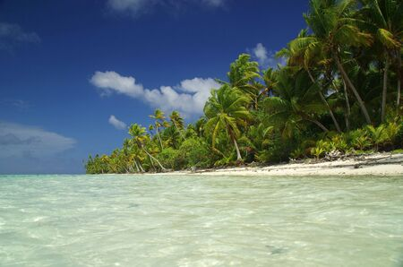Dream location near a turquoise lagoon in Tahiti, French Polynesia photo