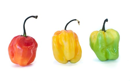 Peppers from the Carribean Islands photo