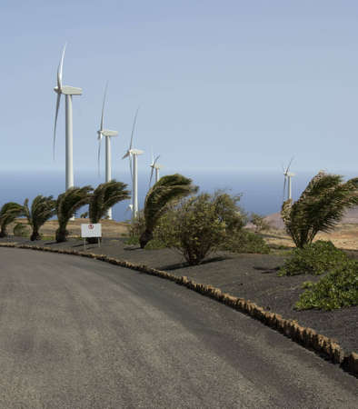 Wind mills at Lanzarote Island, Spain