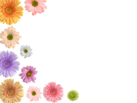 Beatiful border ( frame ) from gerberas for your spring designs