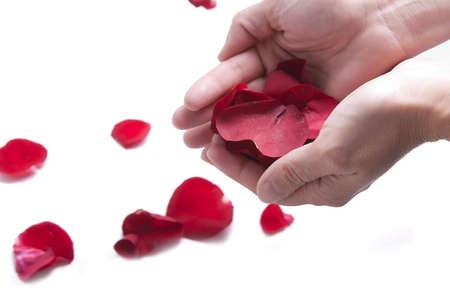 saint valentines: Concetto di San Valentino (petali rossi)