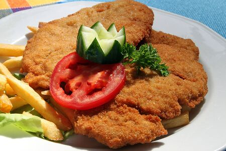 a cutlet with vegetable and salad