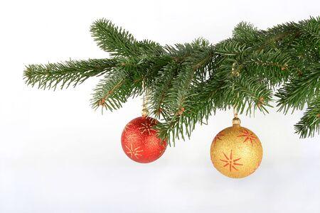 evergreen branch: Bola de Navidad en la rama de �rbol de abeto aislados sobre fondo blanco