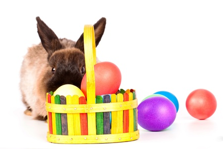 Rabbit or bunny with basket or colorful easter eggs in foreground; isolated on white. photo