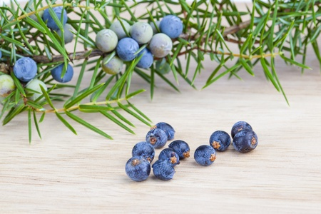 Berries of juniper, used as a spice