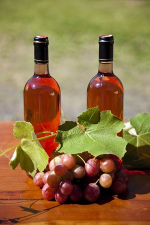 Red wine bottles between vine leaves