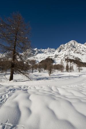 courmayeur: El Mont Blanc visto desde Courmayeur Val Ferret, Valle de Aosta, Italia