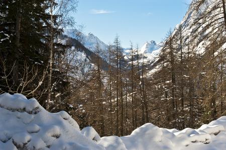 veny: Val Veny seen from Val Ferret, Courmayeur, Aosta Valley, Italy Stock Photo