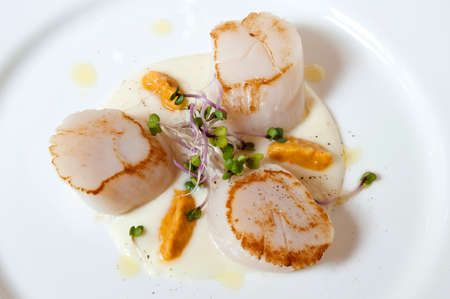 creamed: Seared scallops served on a bed of creamed potato and sweet pepper sauce Stock Photo