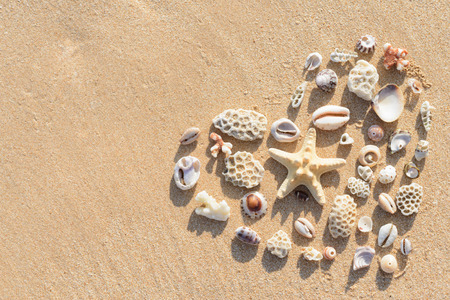 heart on the sand: Heart shape made of stones and shells parts