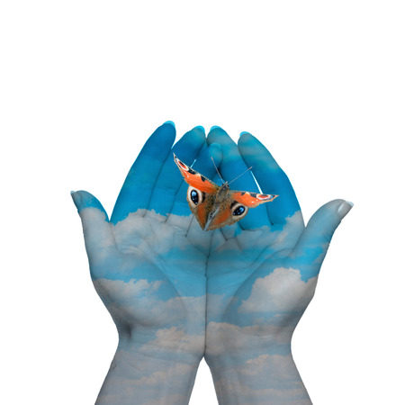 Womans hands letting the butterfly be free to go Stock Photo - 38206062