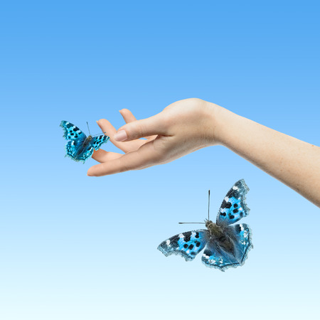Womans hands letting the butterfly be free to go Stock Photo - 38920615