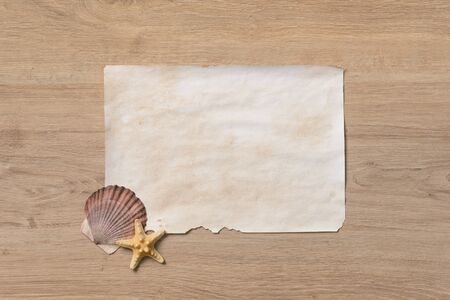 sea life centre: Various objects related to nature and blank paper on wooden background
