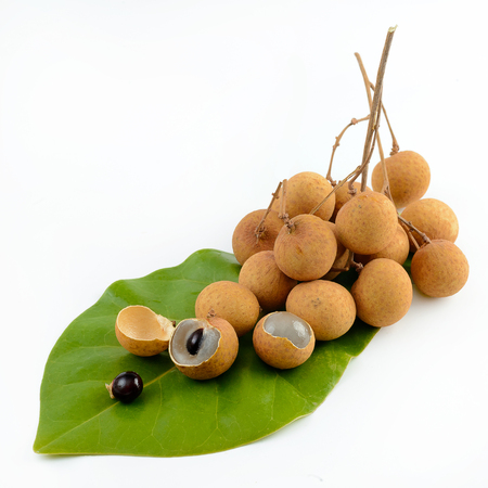 longan fruit isolated on white