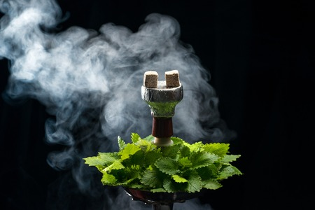 Mint smoking hookah