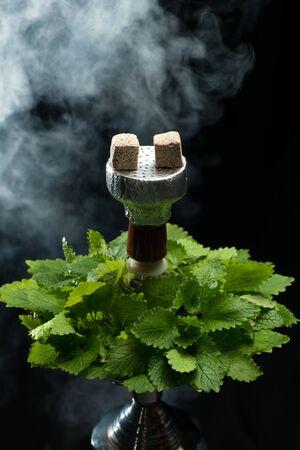foil: Mint smoking hookah