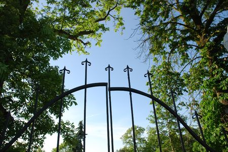 iron gate surrounded by trees photo
