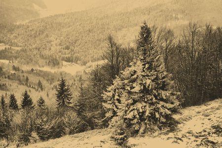 bordered: old style photo of winter scene Stock Photo