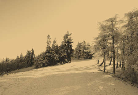old style photo of winter scene photo