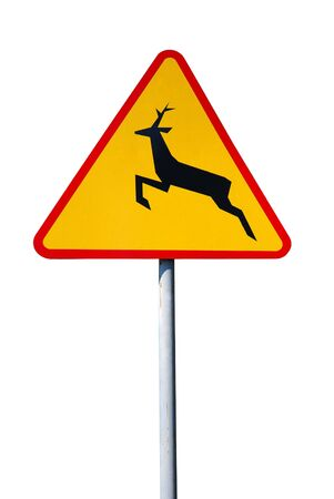drive safely: wild animals sign isolated on a white background.