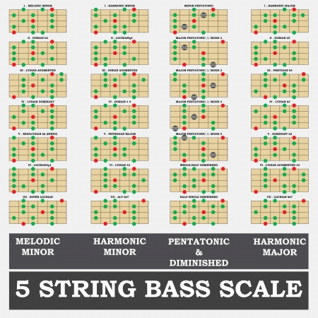b1: 5 string bass scale minor for bass player teacher and student