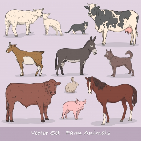 homestead: Farm Animal Vector Set Illustration