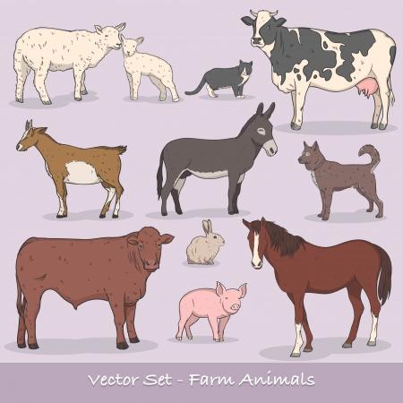 Farm Animal Vector Set Illusztráció