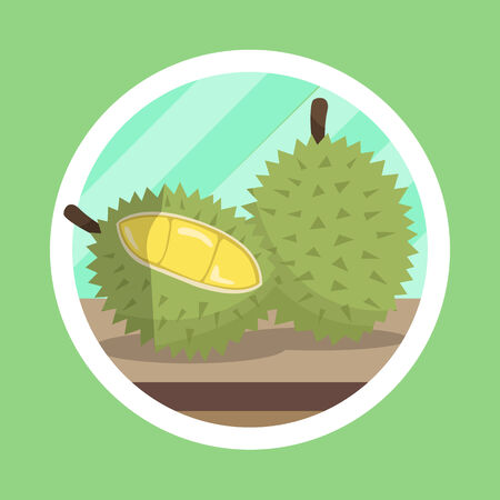 King Fruit Durian Illustration Stock Photo