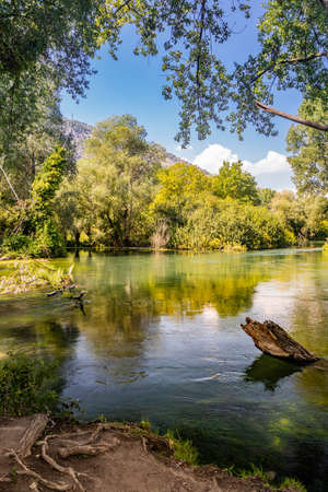 A glimpse of the Tirino river, in Abruzzo, Italy. A corner of unspoiled nature. Little paradise of peace and tranquility. Clear and clean water. The wood, the trees and the rich vegetation. Imagens