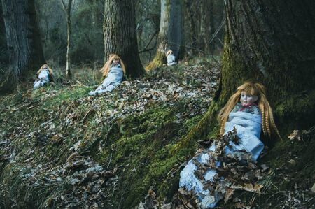 Creepy spooky dolls, sitting in a forest in winter. With a dark, muted edit. Banco de Imagens
