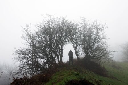 A hooded man silhouetted under a wild archway of trees on a moody, foggy, winters day.