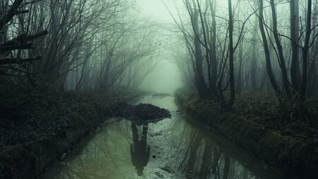 A reflection of a ghostly figure in a forest stream. On a spooky foggy misty day. With a dark moody edit. Banque d'images