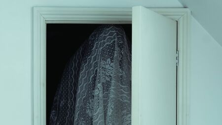 A spooky ghost with a sheet over them. Standing in a closet with the door open.