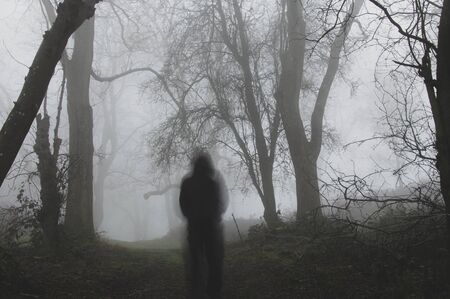 A ghostly blurred figure standing in a forest on a foggy winters day. With a muted, matte edit