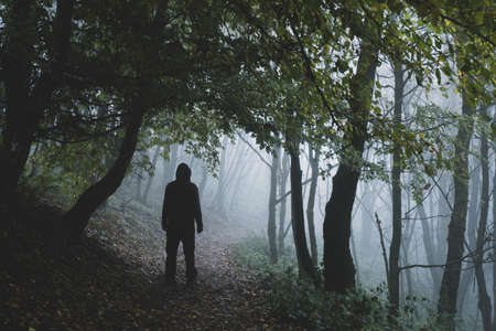 A scary hooded figure, back to camera on a path through a moody misty autumn woodland