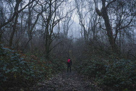A hiker with ruck sack on a path through woodland on a moody, foggy winters day.