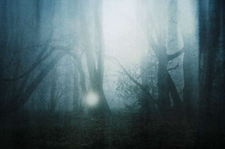 A horror concept of a glowing orb in a spooky forest on a moody, foggy winters day. With a grunge, abstract edit.