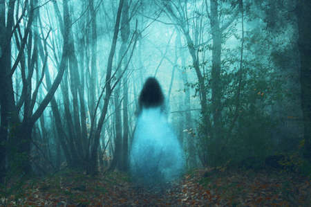 A spooky concept, of a ghostly woman in a long white dress. In a forest. On a foggy winters day. With a grunge, textured edit. Standard-Bild