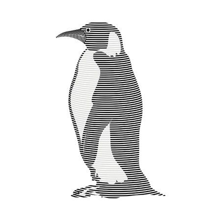 karkas: pinguïn karkas