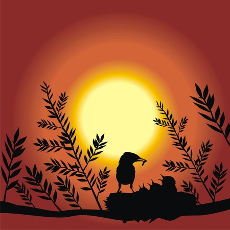 birds in the nest at sunset Vector